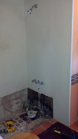 Shower Upgrade with Wall Remodels - before