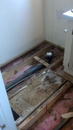 Toilet Floor Repair Replacement- before